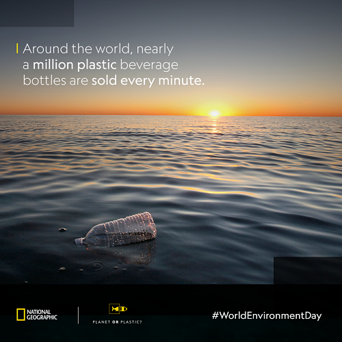 World-environment-day-500.png